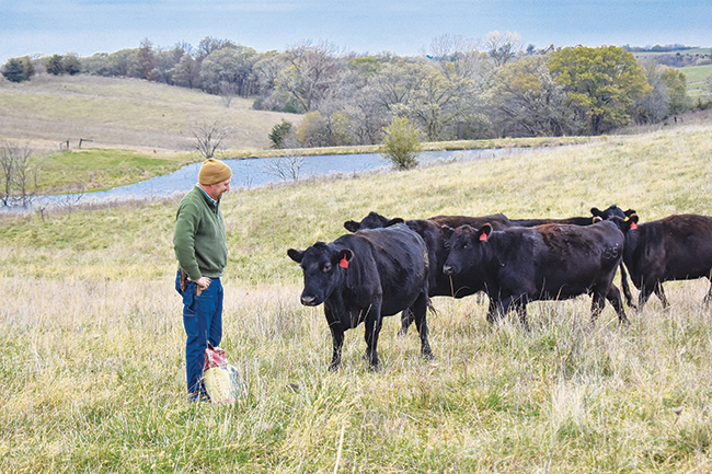 "Watkins' cattle slowly come to him when he calls. After going through some ""pretty bad weather events"" in the 1980s and 1990s, he asked himself why he was fighting nature. ""I said, 'You know what, I want happy cows. I want clean water, and I want healthy soil.' I decided that I wanted to see that and sleep at night instead of feeling like I was doing these other things that didn't feel right."""